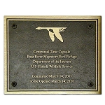 Bronze Plaques Medium 12x9, 12x10, 12x12