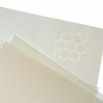 Fine Paper Microchamber Ivory 24 lb Letter Watermarked Size 25 pk
