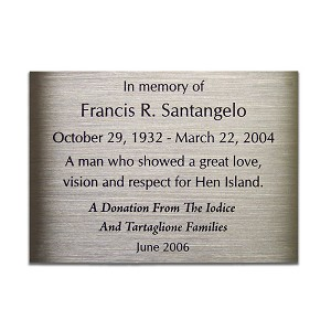 Brushed stainless steel plaque is small but can fit many characters.